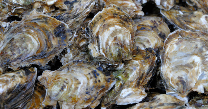 Charlottesville Catering Oyster Roast